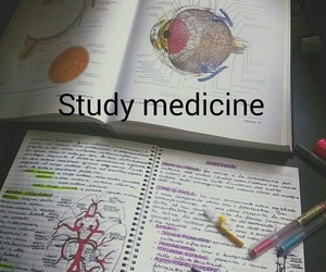 medicine, study, and Dream image