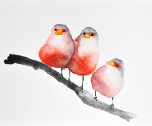 aves, birds, and original watercolor image