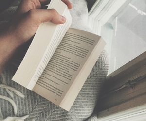 book, cozy, and reading image
