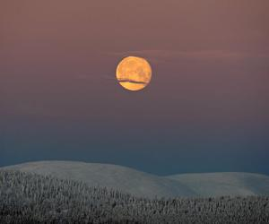finland, forest, and moon image