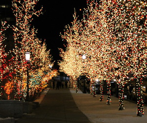 christmas and night image