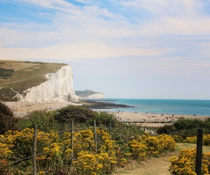 brighton, cliffs, and ocean image