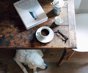coffee, book, and dog image