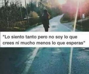 lo siento and frases en español image