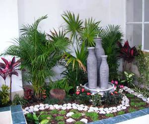 garden landscaping and garden with stones image