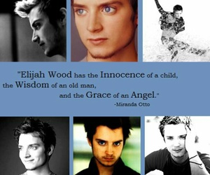 actor, wood, and elijah image