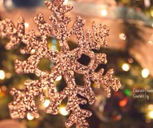 bright, christmas, and christmas tree image