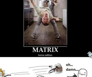 funny, matrix, and lol image