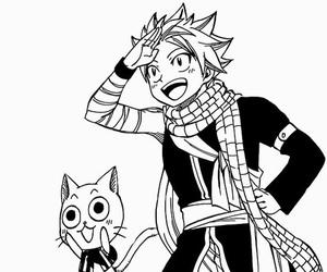 fairy tail, happy, and manga image