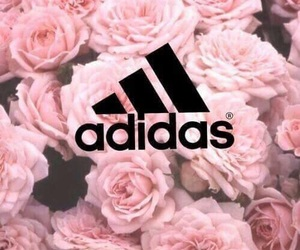 adidas, pink, and rose image
