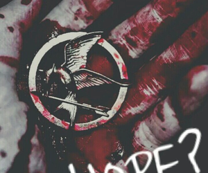 hope, the hunger games, and katniss everdeen image