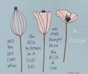 blossom, anais nin, and quote image