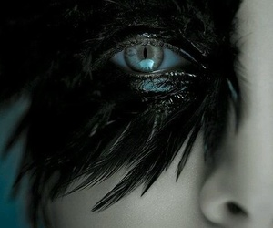 feather, eye, and black image