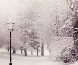 winter and header image
