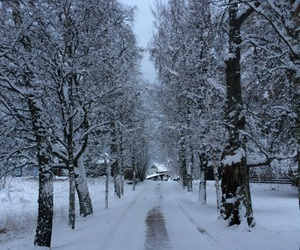beautiful, norway, and snow image