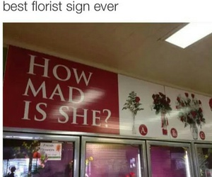 flowers, florist, and mad image