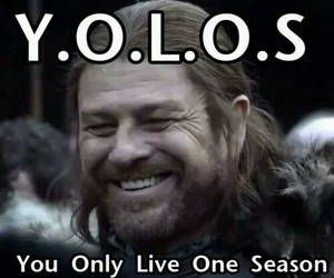 game of thrones, funny, and yolo image