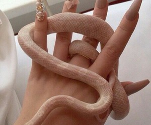aesthetic, nails, and snake image