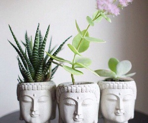 plants, flowers, and Buddha image