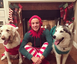 cameron dallas, christmas, and dog image