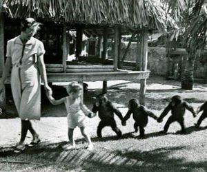 monkey and black and white image