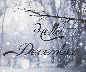 christmas, december, and hello image