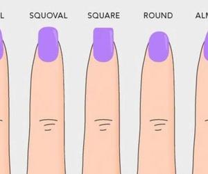 nails, round, and shape image