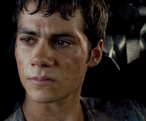 dylan o'brien, thomas, and maze runner image