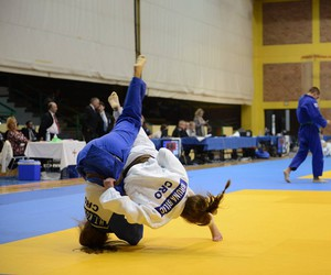 combat, judo, and passion image