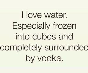 drunk, funny, and vodka image
