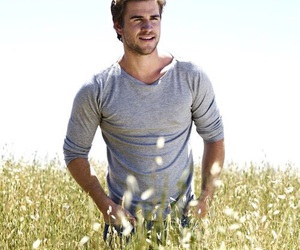 hunger games, liam hemsworth, and liam image