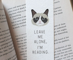 alone, grumpy cat, and bookmark image