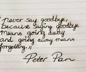 quote, peter pan, and goodbye image
