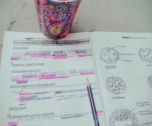 caffeine, doctor, and exams image