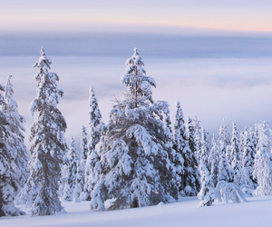 europe, finland, and winter image