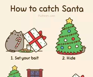 christmas, cat, and santa image