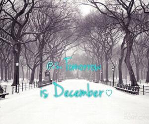 celebrate, chocolate, and snow image