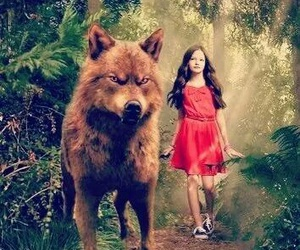 twilight and renesmee image