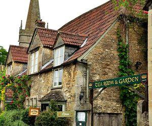 garden, tea, and england image