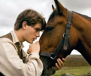 horse, war horse, and boy image