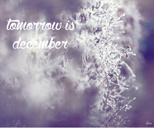 december, frost, and inspiration image