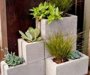 garden pots, upcycled pots, and recycled pots image