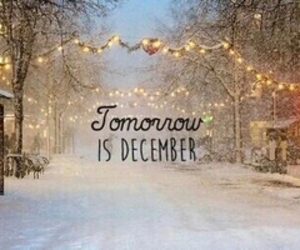 december, love, and christmas image