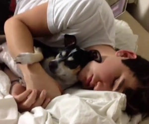 best friends, cuddle, and wishbone image