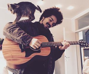 cat, guitar, and guy image