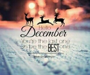 december, hello, and hello decembee image