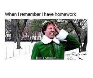 funny, homework, and school image
