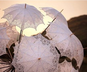 umbrella, lace, and parasol image