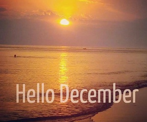 beach, december, and hello image