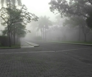 zamorano and neblina image